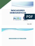 Indicadores_Demograficos.pdf