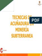 65595320 Charla Sobre Acunadura
