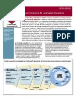 Breves-Los Cimientos de Una Salud Duradera_InBrief-The Foundations of Lifelong Health
