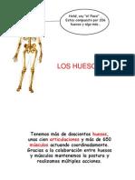 pp-huesos