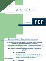 01-Principios Del Drecho Concursal