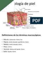 13era Clase - Patologia de Las Enfermedades de La Piel
