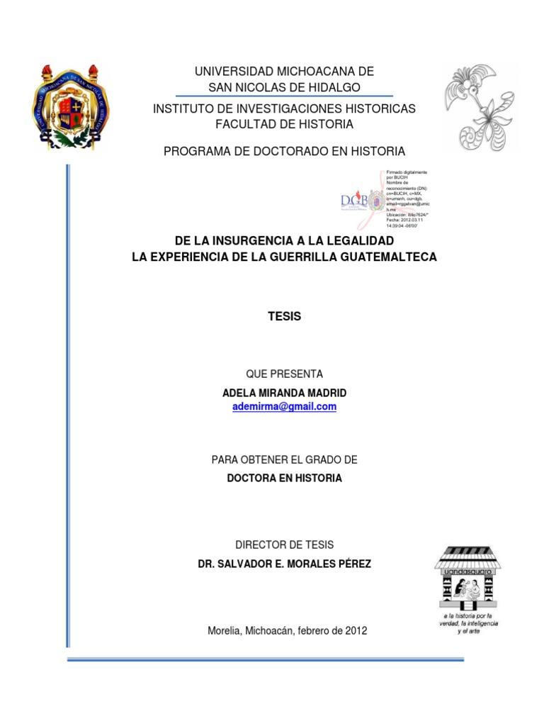 De La Insurgencia a La Legalidad La Experiencia de La Guerrilla ...
