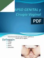 Tema Cirugia Vaginal