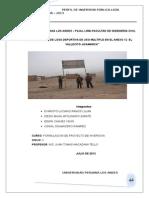 Proyecto Final Loza Deportiva Para Imprimirlo