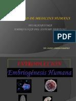 Embrio Neuro