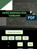 Sistem Sokongan Pada Tumbuhan