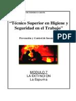 Modulo I-07 - La Extincion-Espuma
