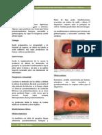 Capítulo 15 - Infecciones Por Difteria y Corinebacterias