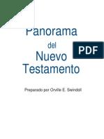 Panorama n.t. y Cuestionario