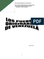 EXPRESIÓN PLÁSTICA ABORIGEN EN VENEZUELA.doc