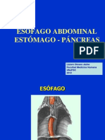 Esofago - Estomago - Pancreas 2012
