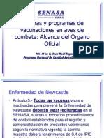 Vacunas y Programas de Vacunaciones en Aves De