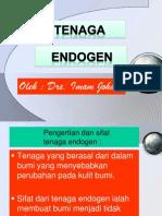 40939714-tenaga-endogen