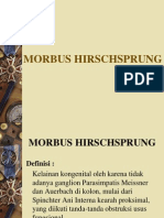 Hirsch Sprung