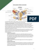 47452109 Traumatologia e Anatomia