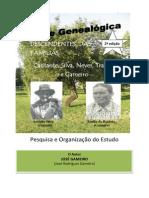 Árvore Genealógica das Famílias Cantante, Silva, Neves, Travessa e Gameiro (paterno)