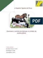 Inspecção - Ana Beatriz, Elisa Mangas, Joana Martins.docx