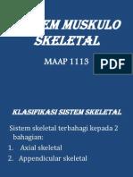 Maap 1113(Skeleton)