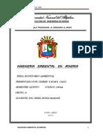 Informe de Los Rosales