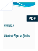 Resumen Capitulo 5-EFE