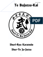 Shuri-Ryu-Karate Ju-Jutsu Rank Requirements 7th Kyu - 2nd Dan