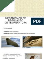 Mecanismos de Regulação de Temperatura