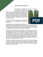 Zonas Forestales de Guatemala, Minerales de Guatemala y Combustible