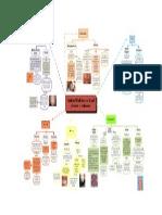 Mapa Conceptual Cambios Fisiologicos en La Piel Durante El Embarazo Grupo 3