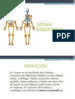 sistema-esqueletico.ppt