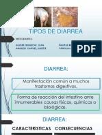 Expo - Tipos de Diarrea1