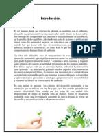 Introducció1