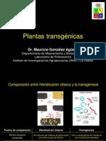 Clase Plantas Transgenicas MGA 2007