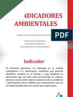 BIOINDICADORES AMBIENTALES