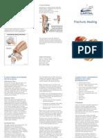 Fracture Healing Ss
