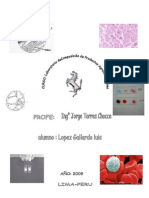 _PRACTICA enzimatica