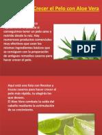 Como Hacer Crecer El Pelo Con Aloe Vera