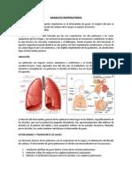4.0 Fisiopatologia de Las Enfermedades Respiratorias