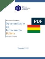 16 IOI Bolivia Mayo2013.16hojas