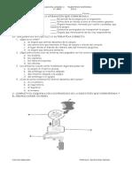 evaluacion unidad II 5°añoo