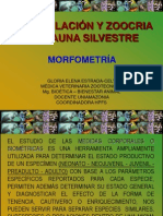 7.Fauna Silvestre - Morfometría