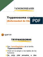 Trypanosomiasis OPERON
