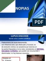 Calegenopatias Lupus