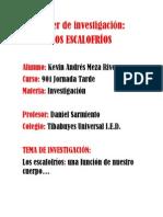 Paper de Investigación