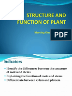 1. Structure and Function of Plant Tissue