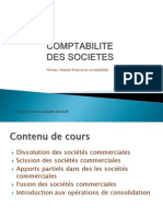 Comptabilite Des Societes Mfc
