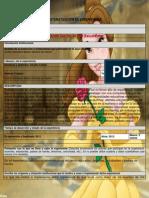 sistematizacin de experiencias para webly