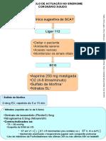 SCA protocolo final