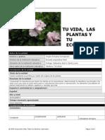 plantilla plan unidad 1a
