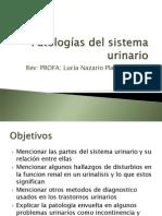 8E..Patolog+¡as del sistema urinario